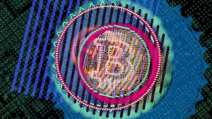 NFT Digital Art That Changes With Bitcoin Price Volatility Sold for Record $101,000