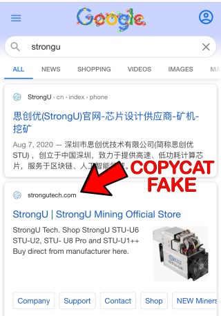 Popular Browsers Like Google Fail to Catch Copycat Crypto Sites at the Top of the Results
