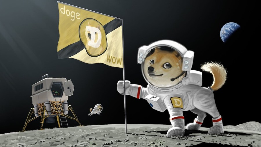 Dogecoin Price Skyrockets 325%, Crypto Fueled by Elon Tweets and Redditors