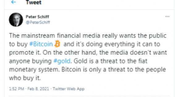 Haunted by Past Elon Musk Predictions, Gold Bug Peter Schiff Tears Into Tesla's BTC Acquisition