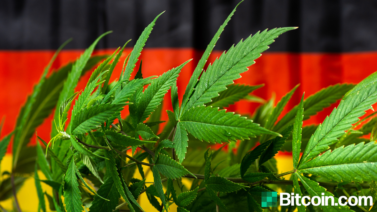 German Cannabis Firm Hedges Bitcoin to Protect from Massive Currency Devaluation