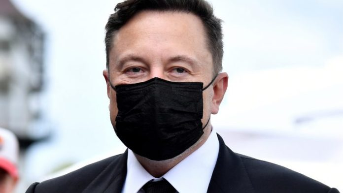 Elon Musk Invented Bitcoin, if You Ask Half of Australians Polled by Finder