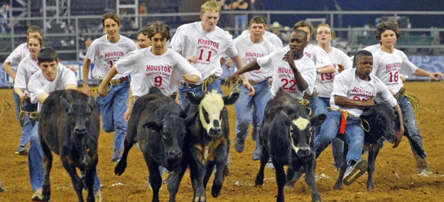 The Houston Livestock and Rodeo Show – What it is and Why you should go