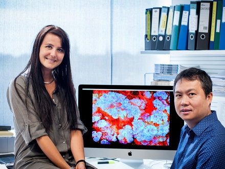 Dr Rios and Dr Fu at WEHI