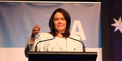 Liza Harvey has replaced Mike Nahan as the WA Opposition Leader.