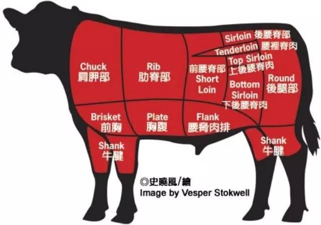 没想到吧?在澳州买牛肉也是技术活!华人买牛肉全攻略