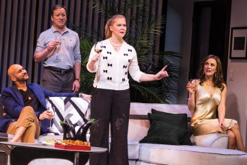 Keegan-Michael Key, Jeremy Shamos, Amy Schumer, and Laura Benanti in Steve Martin's play Meteor Shower on Broadway.