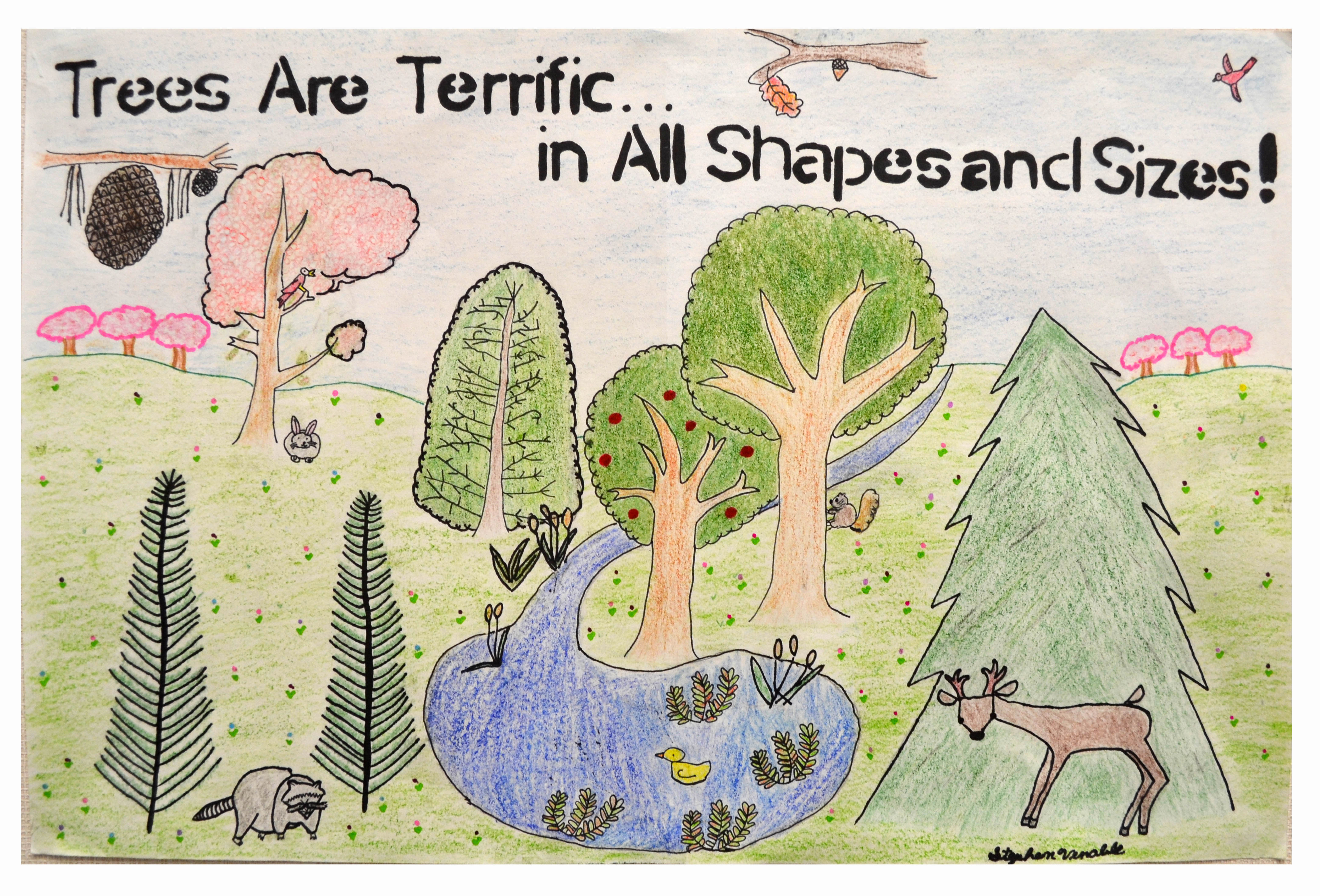 Delaware Forest Service Announces Arbor Day School Poster