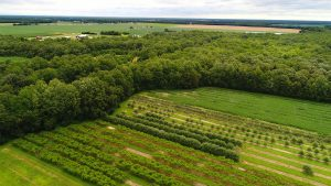 Aerial picture of Delaware farm and forestland in early summer.