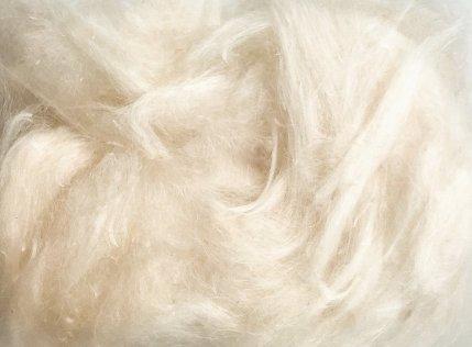 The loose milkweed fibers.