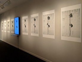 installation view of #DESIGN