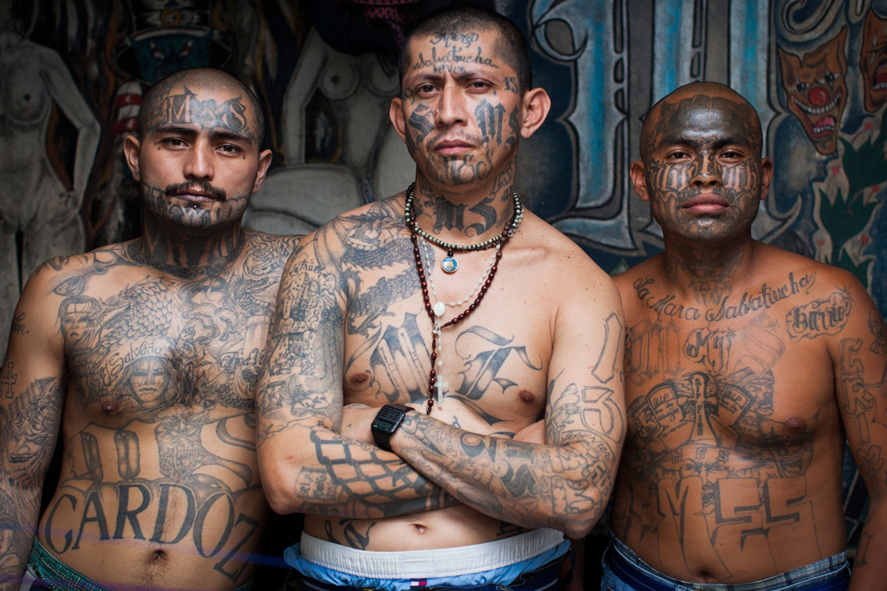 Image result for image, photo, picture, ms-13 gang members