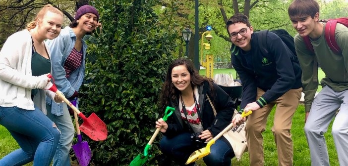 Five Fordham students pose in front of a newly planted holly tree with colorful shovels.