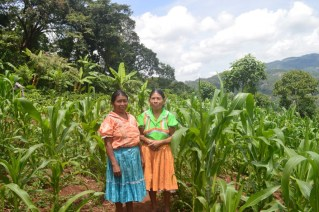 CATIE contributes to poverty reduction and to economic, social and environmental development in Latin America and the Caribbean.