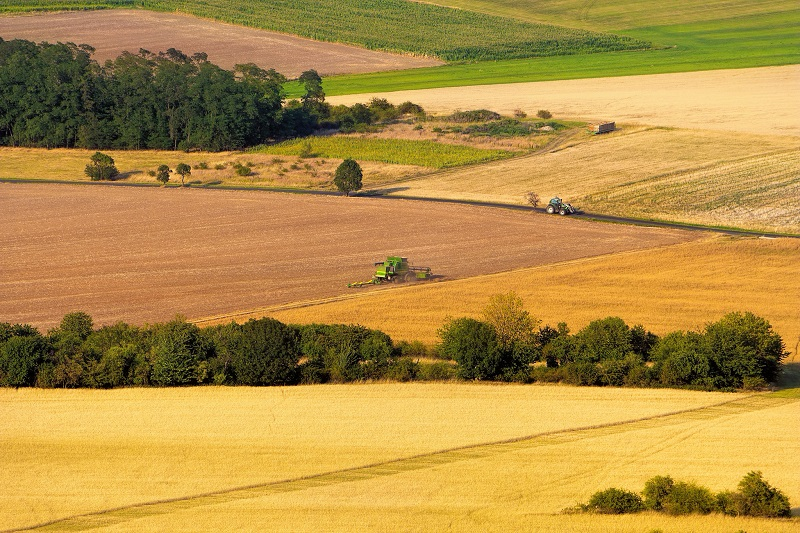 Modern harvest, Czech Republic