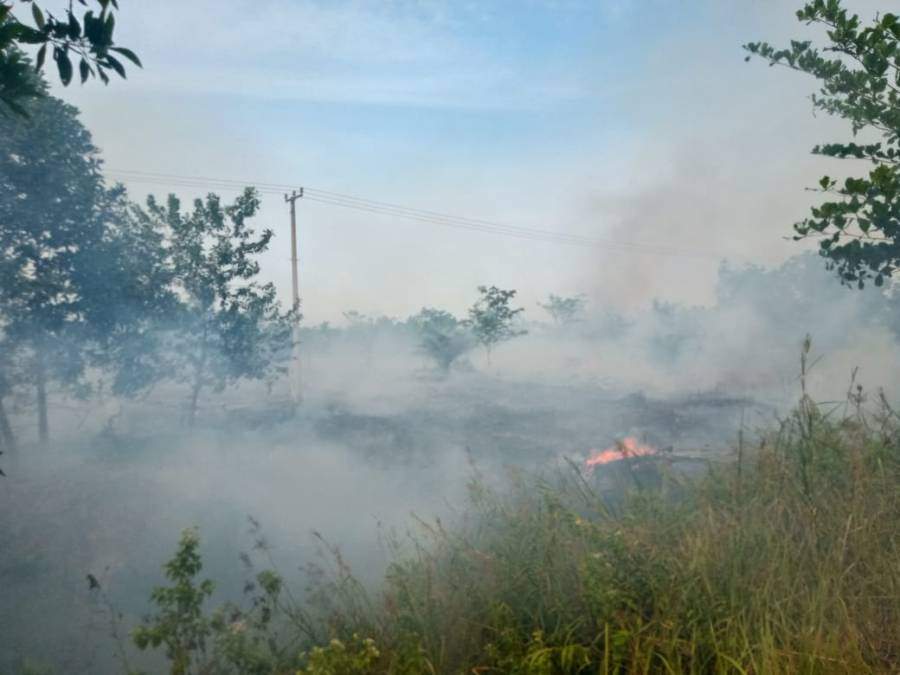 The fires this year have been worsening as the regional dry season progresses into September. Sumarni Laman