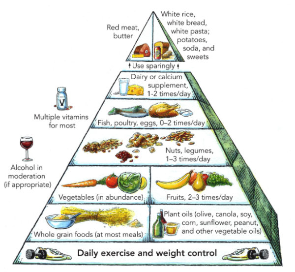 Walter Willett's food pyramid published in 2000. Courtesy of Harvard Health Publishing
