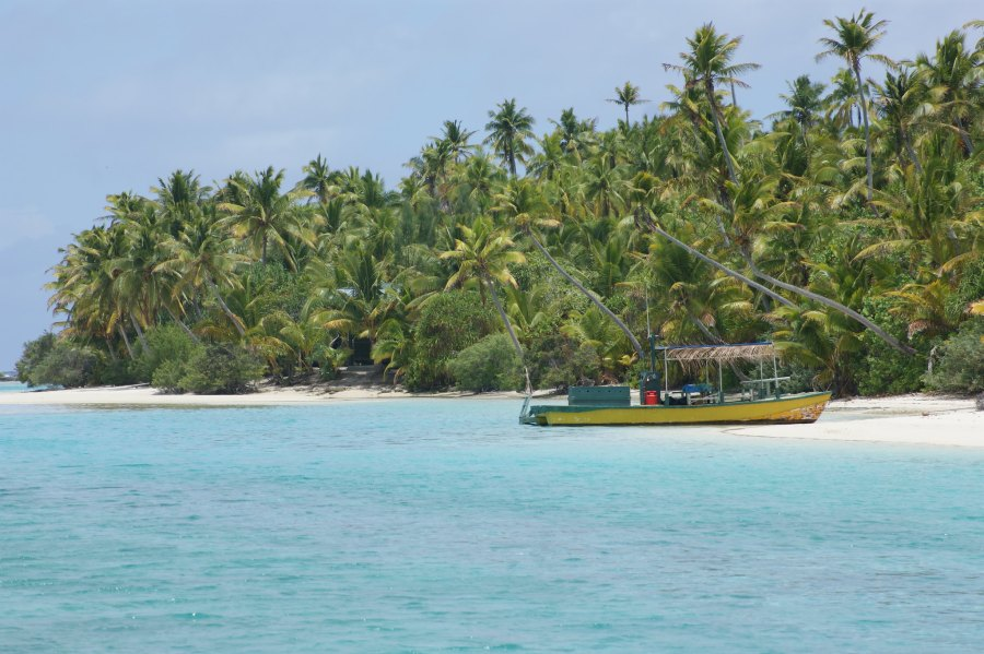 The Cook Islands have been prized for the biodiversity of its coral reefs. Dustinpsmith, Flickr