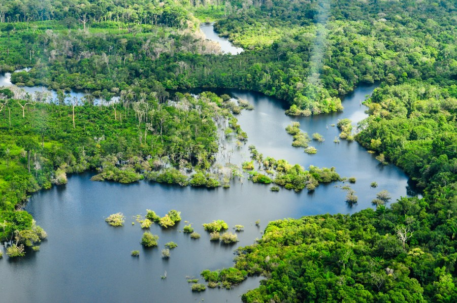 An aerial view of the Amazon Rainforest. Neil Palmer, CIAT