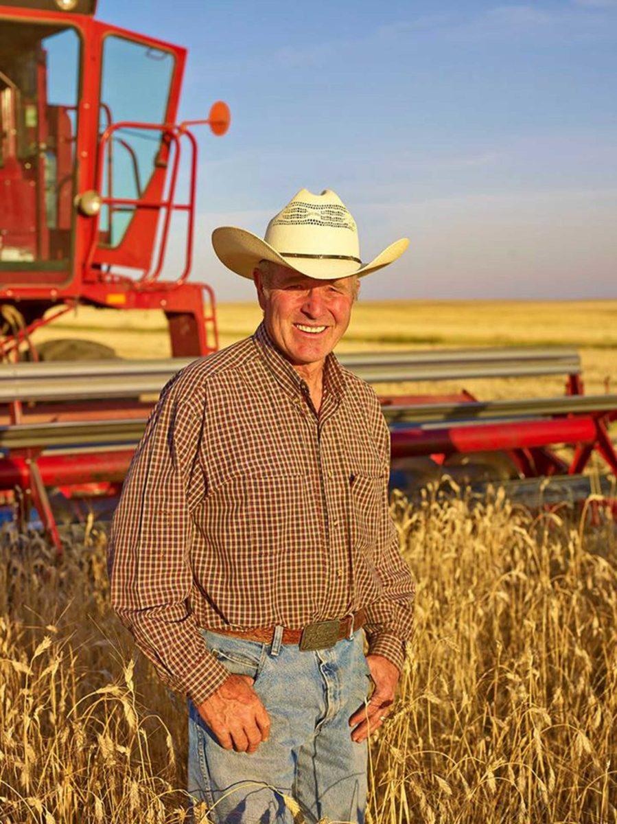 Bob Quinn in a field of kamut wheat. Gerald Freyer