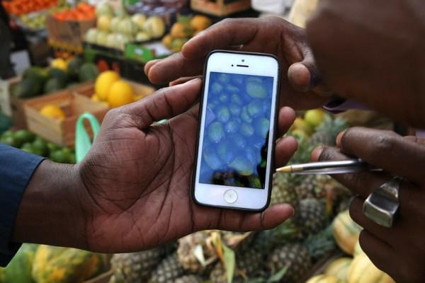 Senegal fruit seller