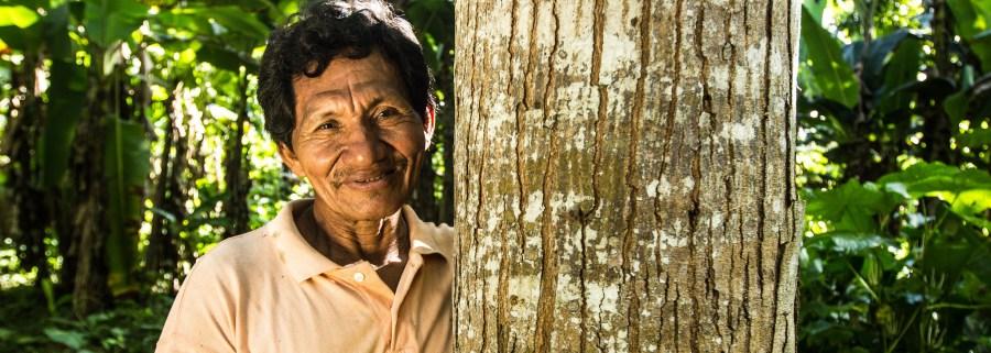 Un miembro de la comunidad indígena Nueva Ahuaypa (Perú) junto a un árbol de su parcela, la cual sigue el modelo agroforestal. Juan Carlos Huayllabamba, CIFOR