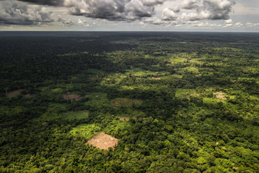 Outskirts of the village of Bokuma, DRC. Axel Fassio/CIFOR