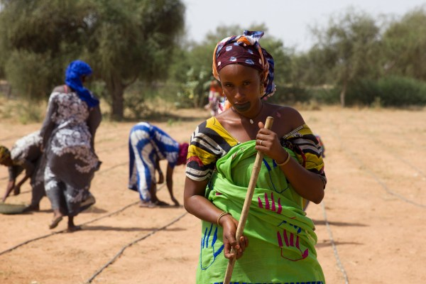 Women are given economic opportunities through the Great Green Wall restoration initiative in Africa's vulnerable Sahel region. Courtesy of MakeWaves