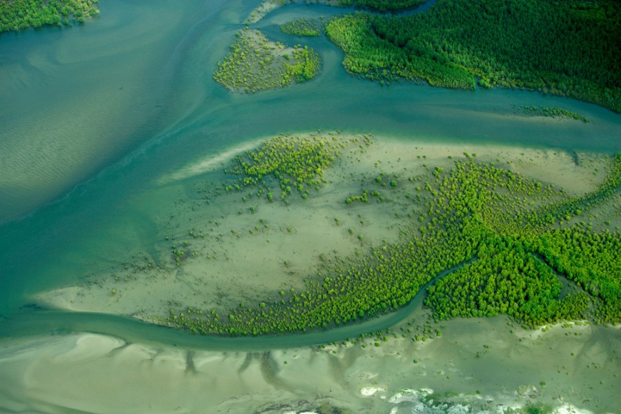 The Rufiji Delta, Tanzania, is home to eastern Africa's largest mangrove forest. Brent Stirton, WWF