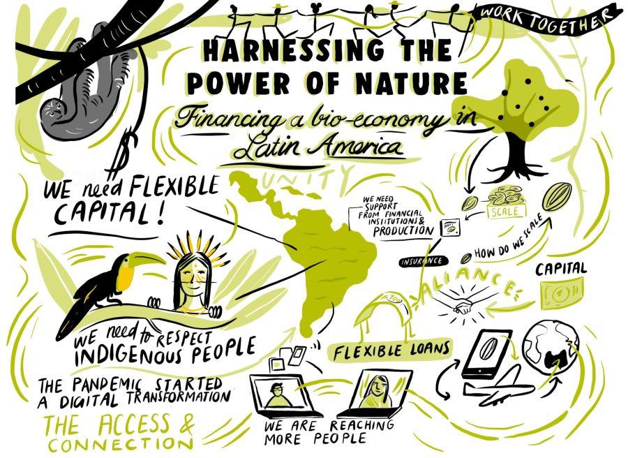 Cómo financiar una bioeconomía en América Latina. Ilustración por Josie Ford