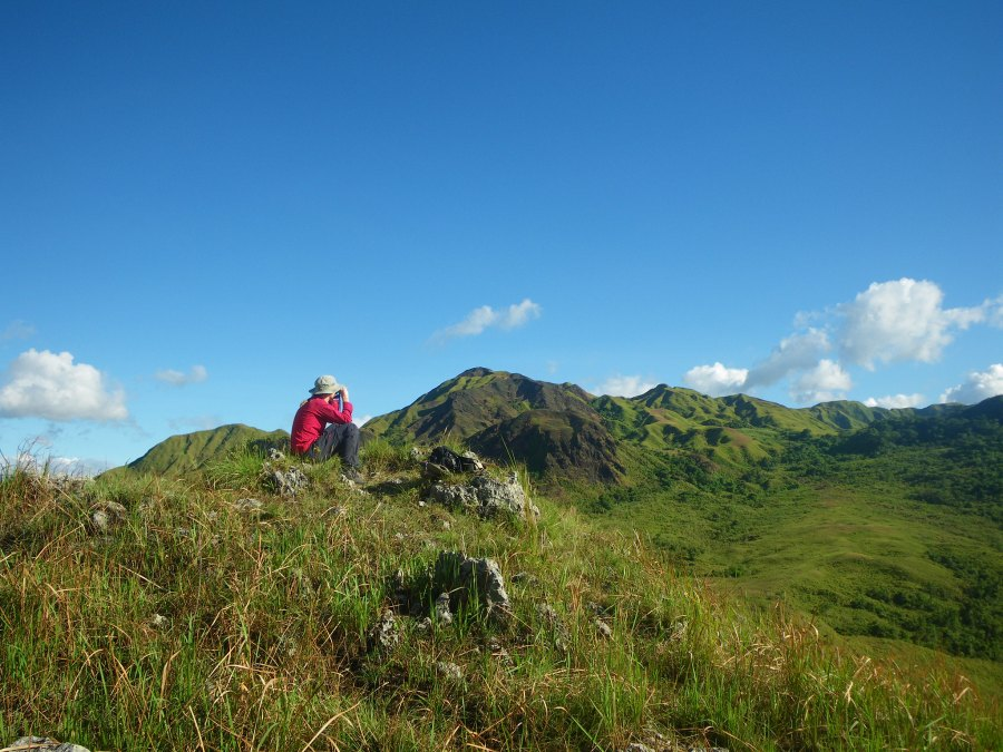 A person watching for the critically endangered tamaraws in Mounts Iglit-Baco National Park in the Philippines. Rangers at the national park received help from a crowdfunding campaign after business stalled from the COVID-19 pandemic. Andy Nelson, Flickr