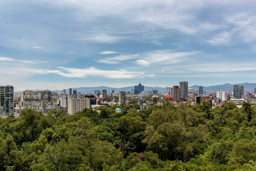 The Mexico City skyline. Arian Bacallao Mojena, Unsplash