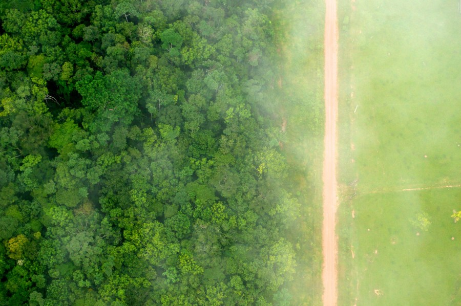 The striking contrast between the forest and agricultural landscape in Acre, Brazil. Kate Evans, CIFOR