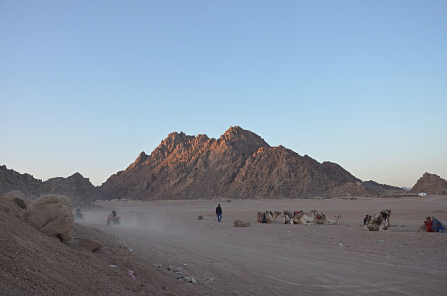 The Sinai Peninsula may have been covered with waterways, grasslands and even forests several thousand years ago. Max Benidze, Flickr