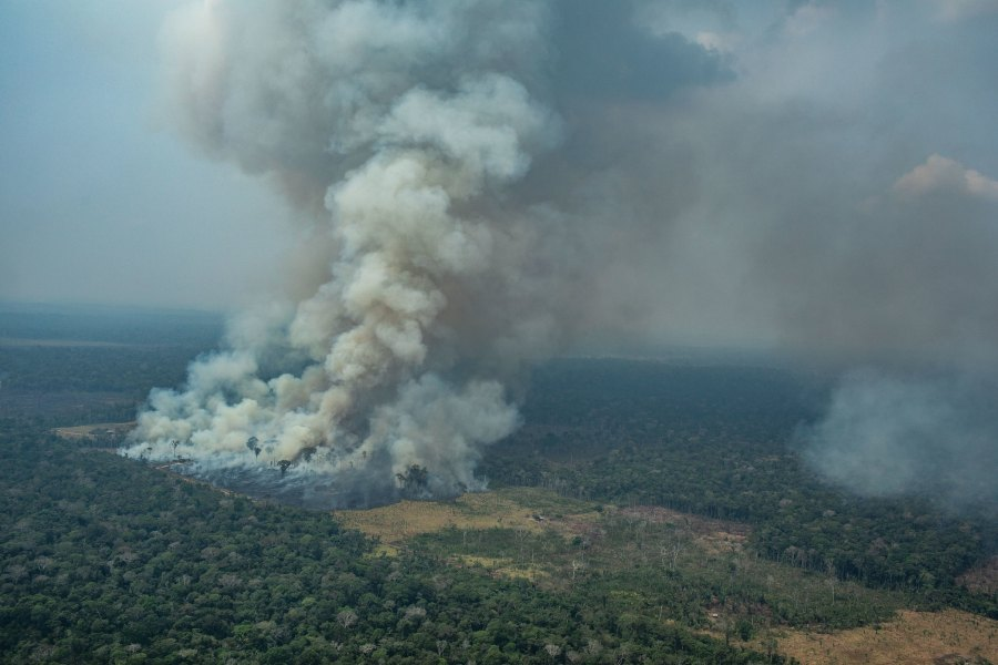 A forest fire in Rondônia, Brazil. The Amazon rainforest has long served as a carbon sink. Victor Moriyama, Greenpeace