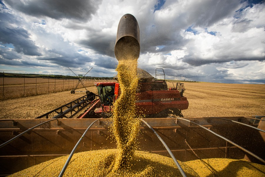 Soybean harvest in Central Brazil. Wenderson Araujo, Trilux