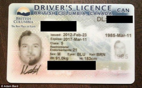 can you drive in california with a canadian drivers license