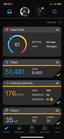 GORUCK Star Course_Los Angeles_step count