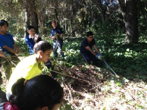 Grade 9 Students Give Back to the Community During Freshman Service Day