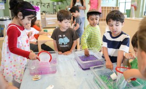 Summer at Harker Preschool Affords Youngsters Chance to Create, Discover and Explore