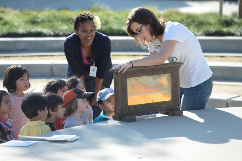 Students Welcome Bee Experts, Grow Bee-Friendly Garden