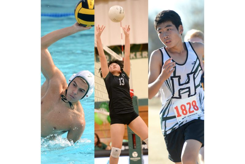 Boys water polo, girls volleyball and boys cross country earn scholastic awards