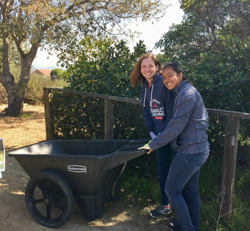 Upper school students take environmental service trip to Alviso