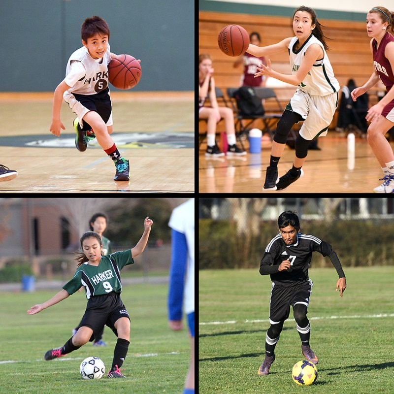 LS and MS athletes earn many top spots: eight first places, six undefeated seasons