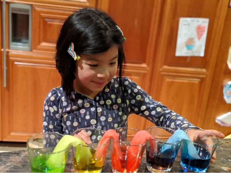 Lower school science students submit creative experiments