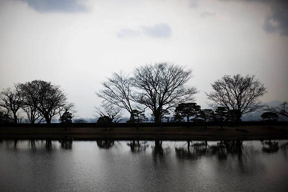 A view of Kyoto's somewhat bare trees on a cloudy day. Stephanie Mitchell/Harvard Staff Photographer