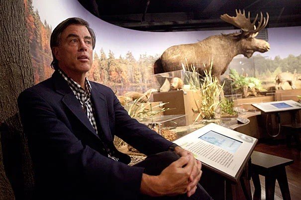 "Today, New England is the nation's most heavily forested region, at 82 percent coverage. ""People assume the pressure is off New England forests, but it's not,"" said Harvard Forest Director David Foster, pictured at the ""New England Forests"" exhibit in the Harvard Museum of Natural History."