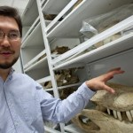 """""""What is interesting about this research is the way it illustrates evolution as a developmental phenomenon,"""" said Associate Professor of Organismic and Evolutionary Biology Arkhat Abzhanov. """"By changing the developmental biology in early species, nature has produced the modern bird — an entirely new creature — and one that, with approximately 10,000 species, is today the most successful group of land vertebrates on the planet."""""""