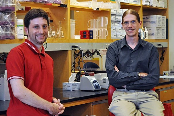 """Curtis Huttenhower (right) and Nicola Segata are two of the Harvard researchers who have helped to identify and analyze the vast human """"microbiome,"""" the more than 5 million microbial genes in the body."""
