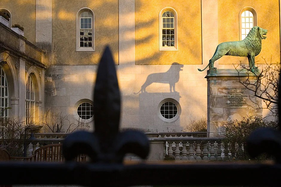 The towering lion casts a shadow on the wall as the sun does its magic on the Busch's walls. Kris Snibbe/Harvard Staff Photographer
